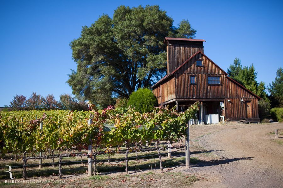 Golden Eye Winery Lifestyle Photography By Wine Photographer Alex Rubin in Anderson Valley_0014