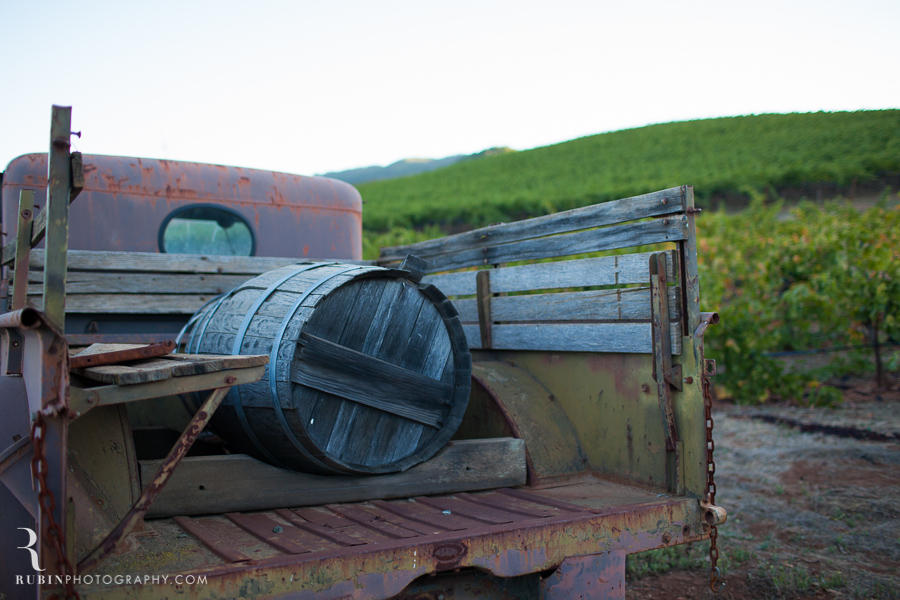 Vineyard and Lifestyle Photographer By Rubin Photography on Moon Mountain in Sonoma_0002