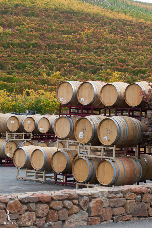Kunde Winery Fall Vineyard Photographs By Rubin Photography in Sonoma_0005