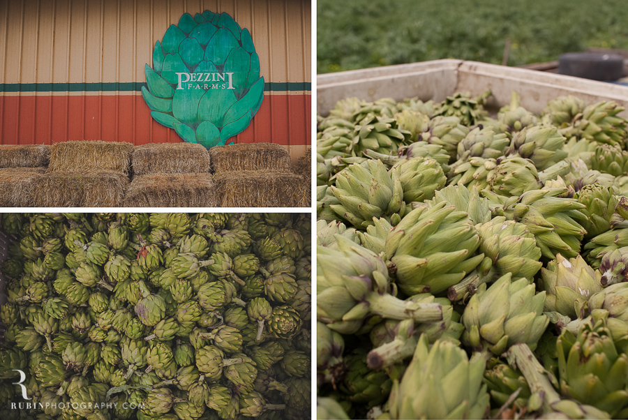 castroville artichoke photos by Rubin Photography Napa Food Photographer0003