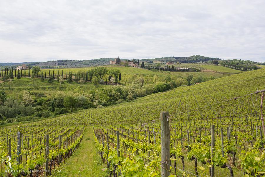 Tuscany Italy Wine and Vineyard Photography at Villa Branca by Rubin Photography024