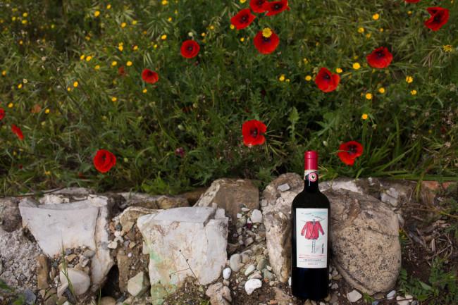 Napa-Wine-Photographer-0013