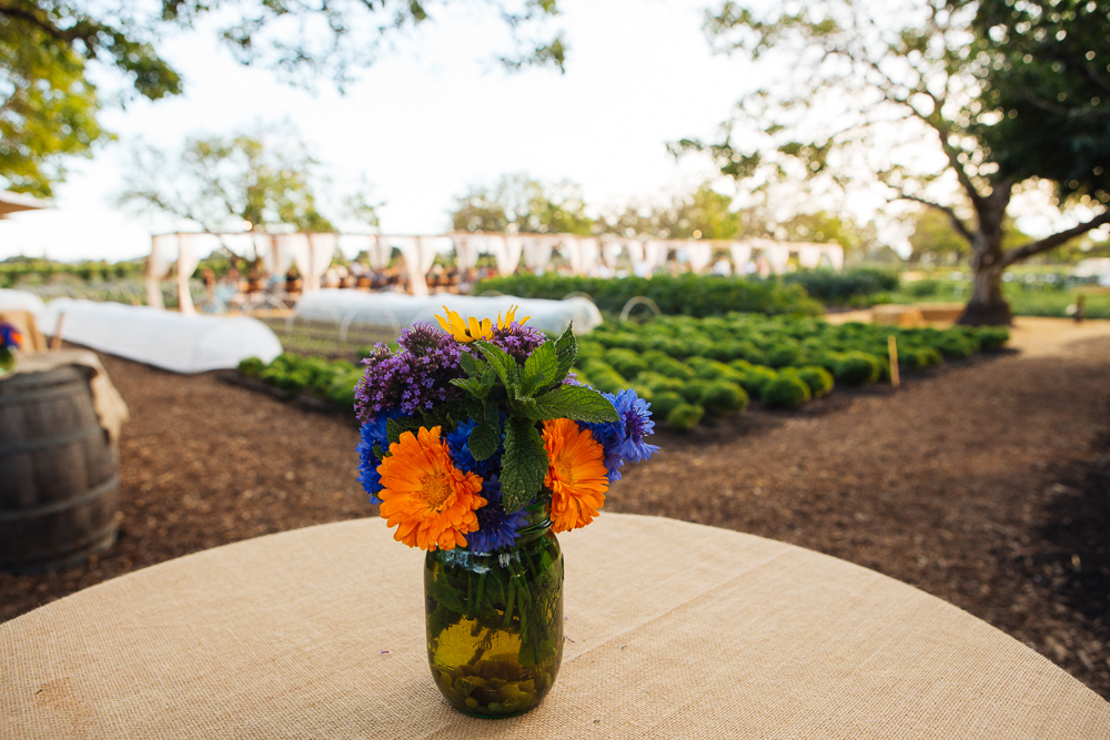 Sonoma Wine and Food Photographer By Alexander Rubin Photography_0017