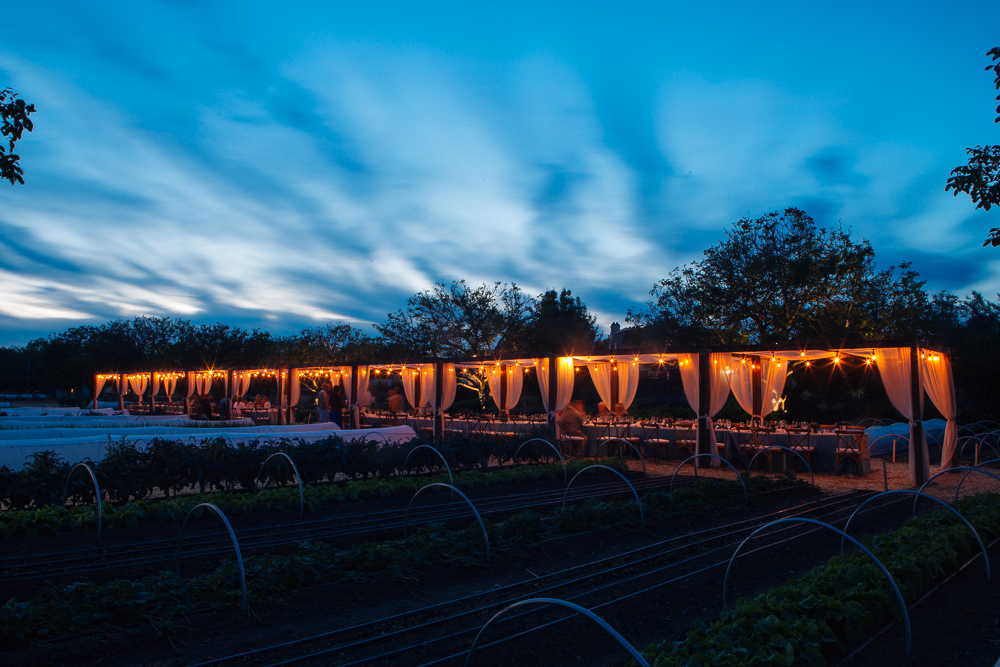Sonoma Wine and Food Photographer By Alexander Rubin Photography_0024
