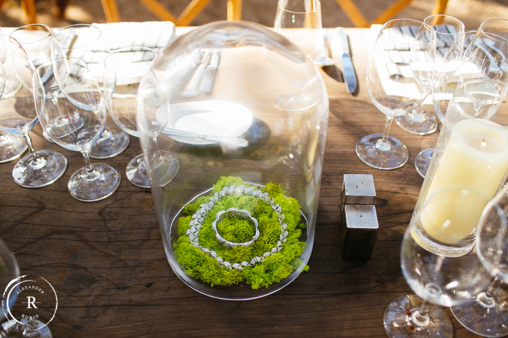 Napa Commercial Wine and Event Photographer_0388-Edit