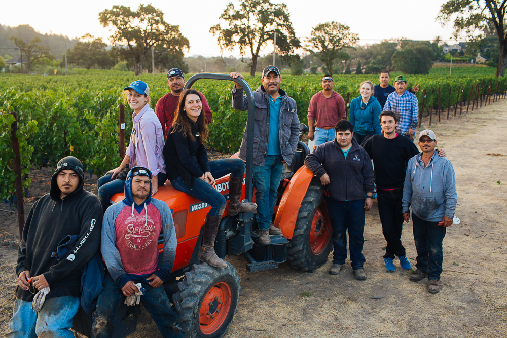 wine-harvest-photographer-in-napa-valley_0211