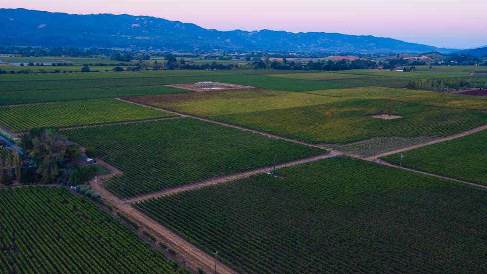 napa-harvest-vineyard-and-wine-photographer0023